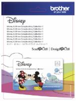Karta se vzory DISNEY MICKEY MINNIE